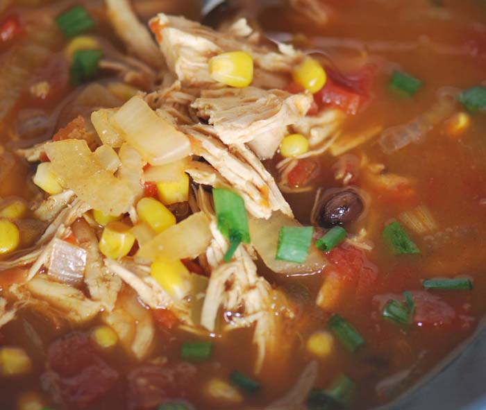 Crock Pot Chicken Enchilada Soup Recipe — Dishmaps