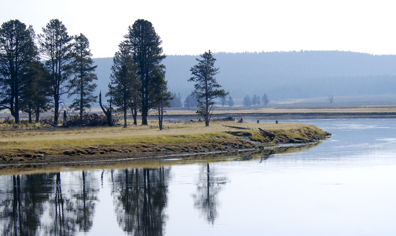 More Yellowstone Pictures