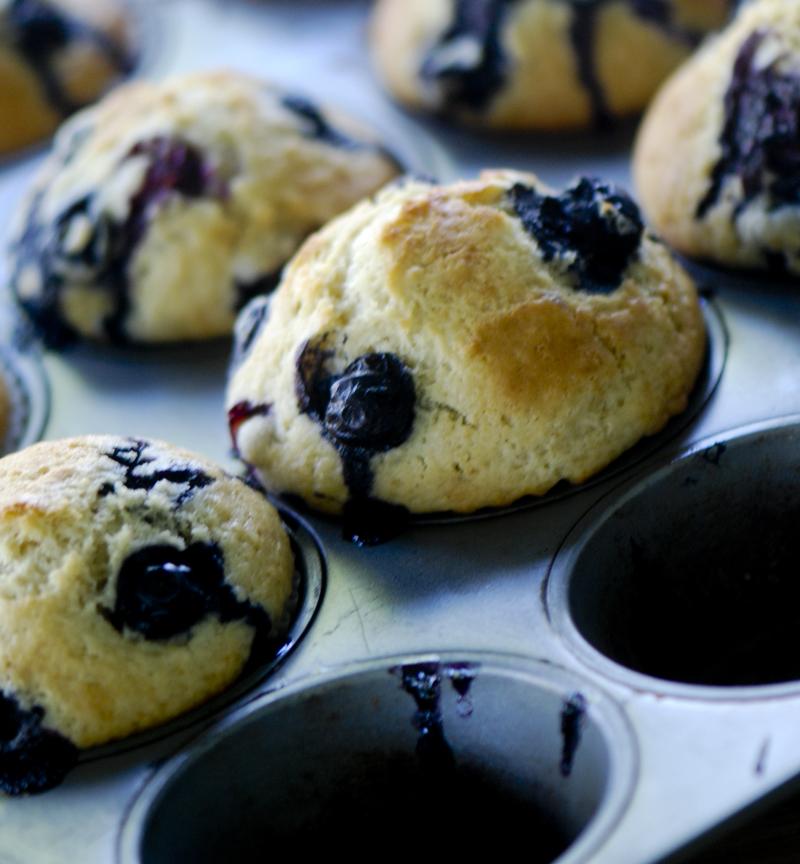 blueberrymuffins 022