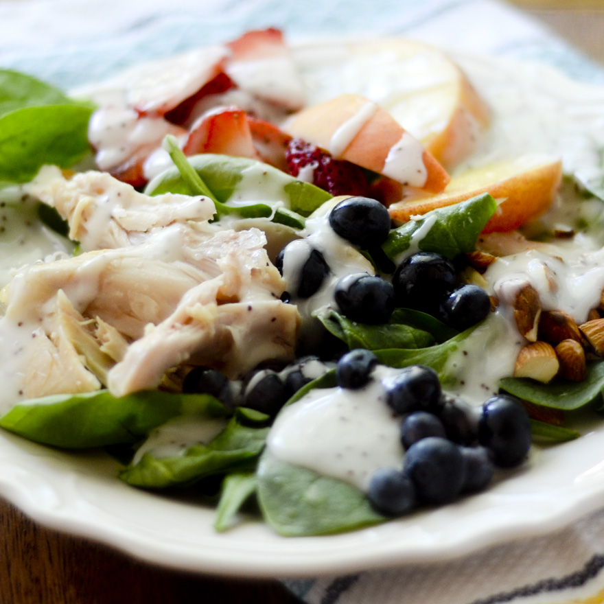 Chicken Fruit Salad with Poppy Seed Dressing 013