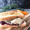 Turkey and Cranberry Paninis