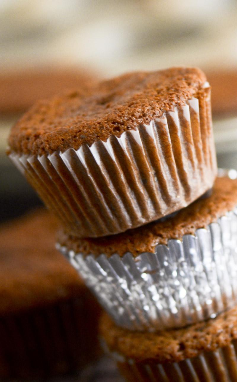raisin bran muffins 028